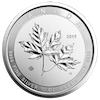 Zilver munt 10 oz Maple leaf