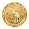 Gold coin 1 oz Kangaroo/Nugget